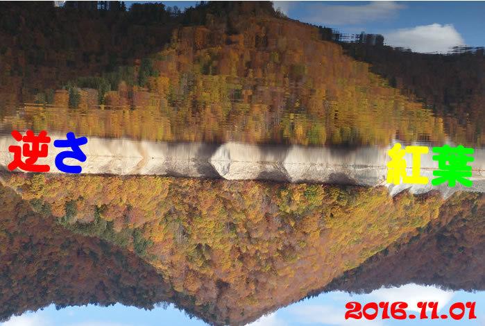 20161101ca1.jpg