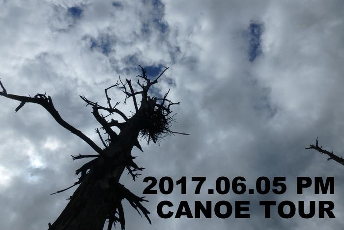 20170605c2.jpg