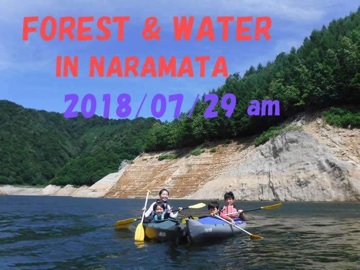 20180729奈良俣湖am01.jpg