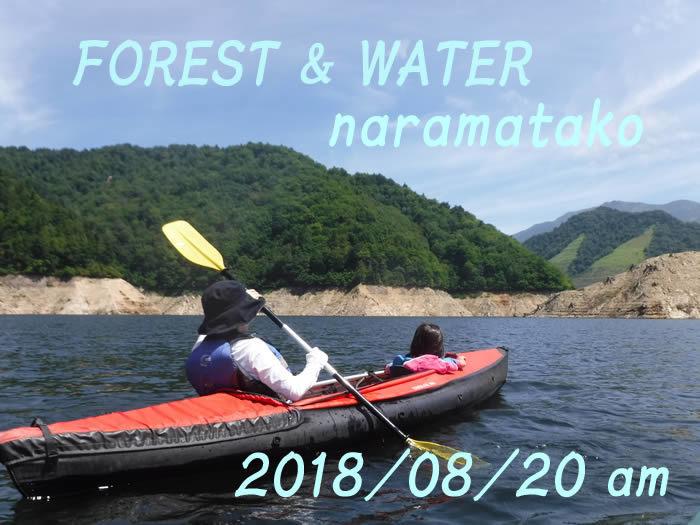 20180820奈良俣湖am01.jpg