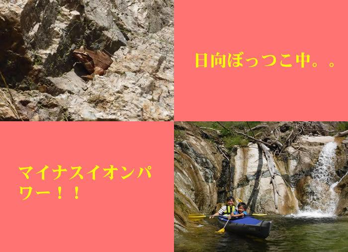 20180924奈良俣湖01.jpg